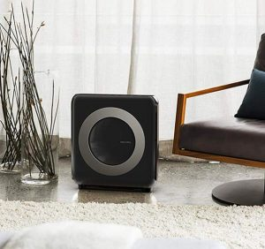 Best Air Purifier For Smoke 2021