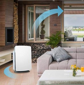 Best Air Purifier for Allergies 2020