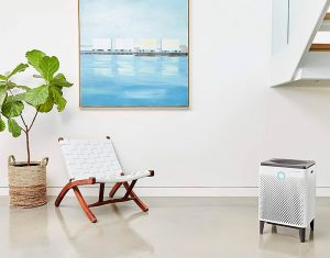 Best Whole House Air Purifiers 2020