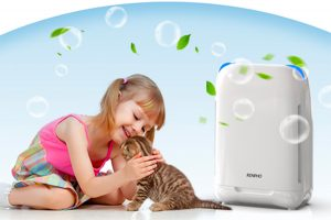 Best Air Purifiers for Pets 2020