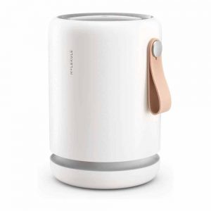 Molekule Air Mini+ Small Room Air Purifier