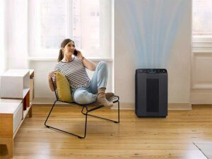 Best Air Purifiers for Mold 2021
